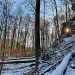 Winterlicher Waldfriedhof - Friedleite Hundshaupten